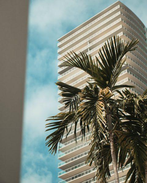 Miami property management